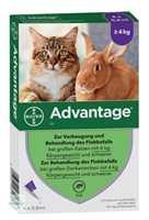 Advantage 80 mg f.gr.Katzen u.gr.Zierkaninchen (4 x 0,8 ml)